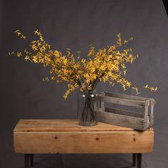 9.95gbp each Forsythia — The Recipe Orange Flowers, Faux Flowers, Viburnum Opulus, Mock Orange, Hydrangea Bouquet, Hill Interiors, Fake Plants, Gladiolus, Green Rose
