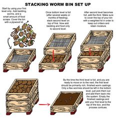 Gardening Tips: How worm composting works! A Worm Compost Bin accelerates the composting process through activity by the worms, and it is easy to manage. The Worm Factory is designed to support all of the benefits or worm composting! Red Worm Composting, Compost Tea, Garden Compost, Diy Compost Bin, Composting Process, Permaculture, Worm Images, Worm Farm Diy, Red Wiggler Worms