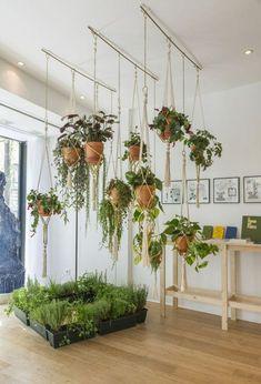 Homemade flower pots – a guide and other DIY ideas - House Plants Vertical Garden Design, Vertical Gardens, Small Gardens, Diy Planters, Hanging Planters, Hanging Gardens, Planter Ideas, Hanging Plant Diy, Indoor Hanging Baskets
