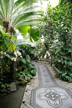 With gorgeous floor design. Here Conservatory of Flowers, Golden Gate Park, San Francisco Cheap Greenhouse, Greenhouse Plans, Pallet Greenhouse, Backyard Greenhouse, Tropical Garden, Tropical Plants, Victorian Greenhouses, Conservatory Garden, Victorian Conservatory