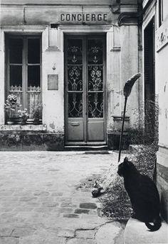 Janine Niepce Le Chat de la Concierge, 1957