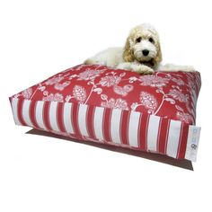 Pet Accessories -- Stylish & Comfortable Dog Beds. AUSSIE MADE! The Molly range of beds are fun & quirky beds that look compliment your home and provide excellent comfort for your dog. Damask & stripes make for a modern, fresh combination.