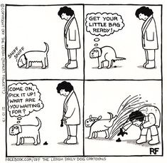 Doggy Fun...