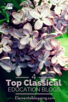 """Top 4 Classical Education Blogs 