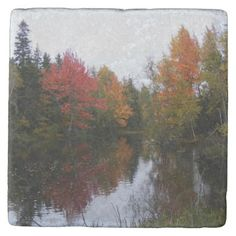 Fall Scenery Marble Coaster - marble gifts style stylish nature unique personalize