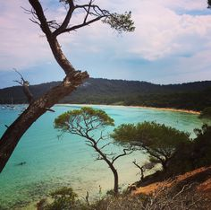 Petit coin de paradis  #nobaddays #liveyourdreams #liveoutdoors #travel #water #sun #nature #love #outdoors #life #adventure #naturelovers #instatravel #holiday #blue #explore #lifestyle #island