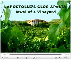 "Lapostolle's ""Clos Apalta"", Chile - Jewel of a Vineyard: Video Wine Tourism, Video Contest, Video Home, Luxury Travel, Wines, Chile, Jewel, Vineyard, Glass"