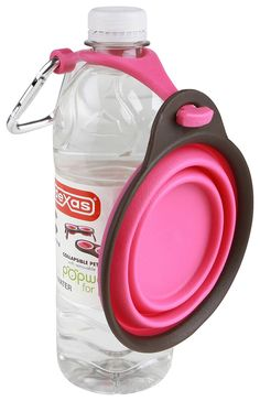 Popware for Pets Collapsible Travel Cup with Bottle Holder. The dog will drink from a water bottle but the water ends up on the ground. Travel Cup, Pet Travel, Big House Cats, Dog Park, Service Dogs, Bottle Holders, New Puppy, Dog Accessories, Dogs And Puppies