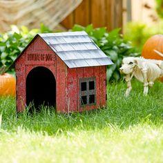 Beware of Dog! Halloween Skeleton Dog House