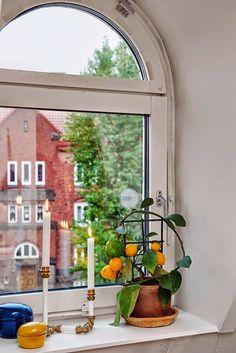 окно в скандинавском стиле