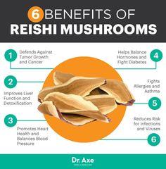 Reishi mushroom benefits - Dr. Axe http://www.draxe.com #health #holistic #natural