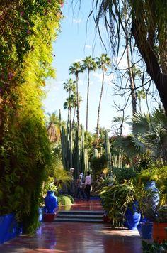 Jardin Majorelle, Marrakech / Photo Lejardindeclaire