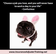 Choose the right job for you!