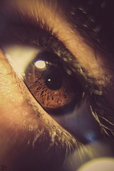 Hidden within by (Sherif Wagi) Snapchat, Iris, Cool Pictures, Beautiful Pictures, Art Populaire, Look Into My Eyes, Find Image, Tumblr, Brown