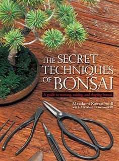The Secret Techniques of Bonsai: A Guide to Starting, Raising, and Shaping Bonsai, Author: Masakuni Kawasumi II, Hardcover Bonsai Pruning, Bonsai Plants, Bonsai Garden, Jade Bonsai, Juniper Bonsai, Bonsai Tree Care, Bonsai Tree Types, Plantas Bonsai, Bonsai Tools