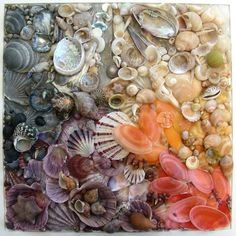 Seashell Mosaic - I'm looking for ideas to do something with the 30 or so sand dollars I've collected. They're really fragile, so I may have to do something under glass.