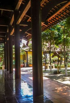 Hue Patio Trees - - - - - A look through the trees of the royal palce in Hue. #vietnam #hoian