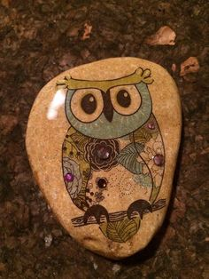 Owl painted on stone!!