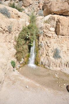Deserts Of The World, Desert Oasis, Landscape Photos, Pose Reference, Diorama, Israel, Nativity, Bridge, Miniature