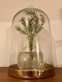#glaskupa #christmas #inspiration Glass Vase, Christmas, House, Inspiration, Home Decor, Dekoration, Xmas, Biblical Inspiration, Decoration Home