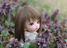 Beautiful and lovely Photos of Pukifee Luna Dolls | Incredible Snaps