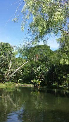 Jardim Botânico  - Rio de Janeiro  - Foto: Marília Vidigal Carneiro