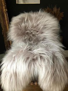 Pixie is a large linen colour Icelandic sheepie cosy warm luxurious furry rug/throw at affordable prices Cosy Living Room Warm, Large White, Black And White, Small Throws, Stool Covers, Sheepskin Rug, Dark Interiors, Warm Colors