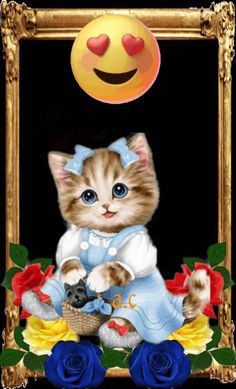 Kitten Cartoon, Kitten Images, Love You Gif, Beautiful Love Pictures, Breakfast Ideas, Cute Wallpapers, Animated Gif, Appliques, Videos