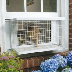 "I want to make this for my cat!  LOOKS EASY.. JUST BUY A SMALL PET CAGE & REMOVE ONE SIDE OF IT.. ADD SOME ""L"" BRACKETS TO THE TOP TO HOLD AGAINST INSIDE OF WINDOW TO PREVENT IT FROM FALLING OUT.."