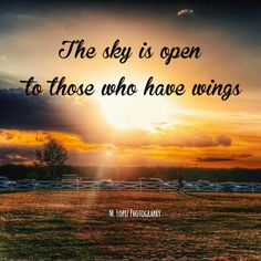Quotes: The sky is open to those who have wings... #MLopezPhotography