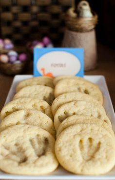 """Photo 1 of 10: Dinosaur Party / Birthday """"Zachysaurus"""" 