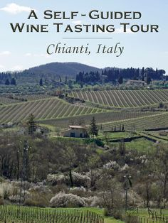 The best way to see and experience Chianti Classico wineries in Tuscany is on a self-guided wine tour. Chianti Classico, Chianti Wine, Italy Trip, Italy Vacation, Italy Tours, Siena Italy, Tuscany Italy, Florence Italy, Italy Travel Tips