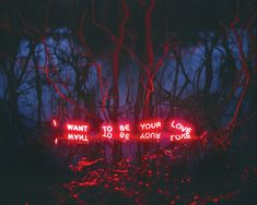 Neon Type Installations in Nature by Jung Lee
