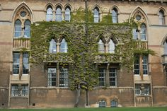 ivy covered christ church - Oxford