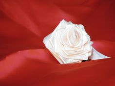 Semplicemente Dani: Tante rose Icing, Rose, Flowers, Desserts, Plants, Tailgate Desserts, Pink, Deserts, Postres