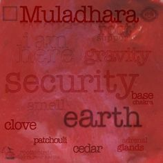 Muladhara Chakra, Chakra Healing, Wheel Of Life, Survival Instinct, Pelvic Floor, Human Condition, In This World, Chakra Root, Chakras