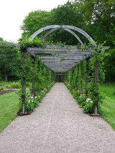 Our Pergola looks similar to this photo - (minus the curved arch on top) - It starts by our back deck and stretches 35 feet, to a small garden shed, with a shady spot to sit. The posts on the left are attached to raised garden boxes, the ones on the right, are a part of our perennial flower beds. - It*s been 14+ years now, and the vines, climbing roses, clematis etc. are doing a great job covering it. (Thank you B! :) -wk-)