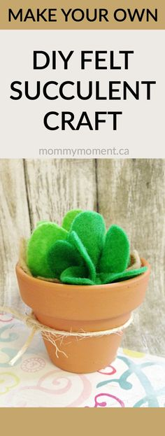 This DIY FELT SUCCULENT CRAFT will add life to your home and is a great craft for kids to make too. You could also make this as a homemade gift for a friend.