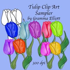 Tulips Clip Art Sampler includes 9 images of a variety of colors and black line art.  Just follow my Terms of Use that is included in the product.