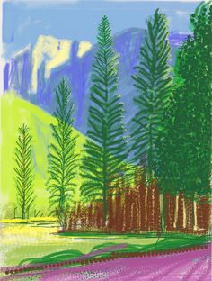 View Untitled by David Hockney on artnet. Browse upcoming and past auction lots by David Hockney. David Hockney Ipad, David Hockney Art, David Hockney Paintings, David Hockney Landscapes, Landscape Art, Landscape Paintings, Pop Art, Painting Wallpaper, Vincent Van Gogh