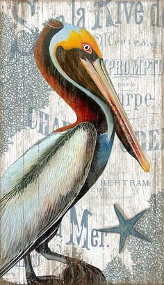 A regal sea bird art piece using Suzanne Nicoll& image of a vintage Pelican printed directly to a distressed wood panel made from tongue and groove slats of alder, hemlock, or fir lumber. Coastal Art, Coastal Cottage, Coastal Style, Coastal Living, Beach Cottage Style, Beach House Decor, Les Hamptons, Pelican Art, Pelican Tattoo