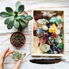 Dara Muscat Blog - Crystals for Beginners