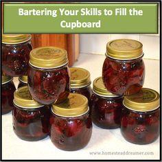 Bartering Your Skills