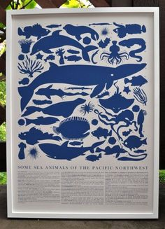 PRINT  Blue Sea Animals of the Pacific Northwest Poster by Banquet