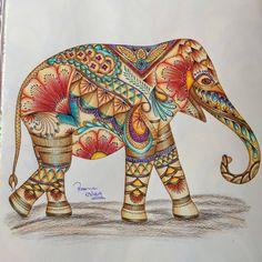 Instagram 上的 Millie Marotta livros:「 Lindo desenho colorido pela @rosanasbueno  #ReinoAnimal #ReinoAnimalOLivro #animalkingdombook #MillieMarotta #MillieMarottaBooks… 」