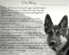 For all of my doggies in heaven~ For now I'm keeping you in my heart... until the day we meet again...then you'll be in my arms and we will never part. I love you and miss you so much. :( ♥♥
