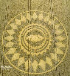 Рисунок появился на поле в графстве Уорикшир в Англии