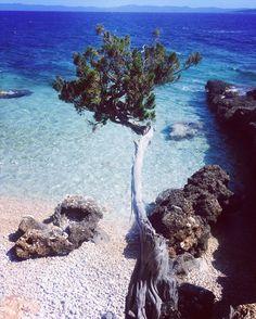 Tempted 4 an early morning swim... ?  #CastAway #beach #Hvar #Croatia #summer…