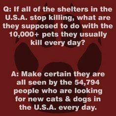 Today, the number one cause of death for healthy dogs and cats in the U.S. is the local animal shelter.  Be part of the change!