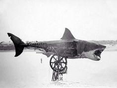 Rare photo jaws mechanical shark out of water